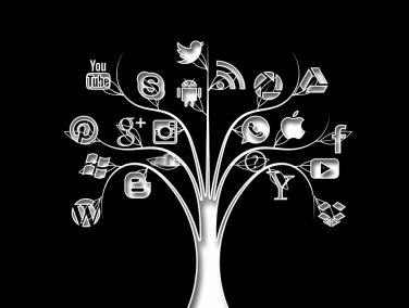 social-media-1377018_960_720